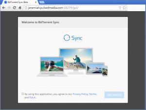 btsync launch